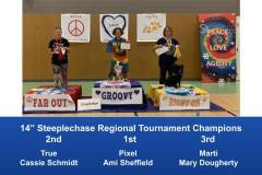 Central-Regional-2019-August-15-18-Gardner-KS-Steeplechase-Performance-Speed-Jumping-Tournament-Champions-5