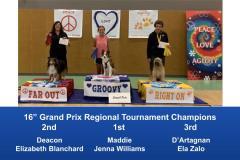 Central-Regional-2019-August-15-18-GardnerKS-Grand-Prix-Performance-Grand-Prix-Regional-Tournament-Champions-4
