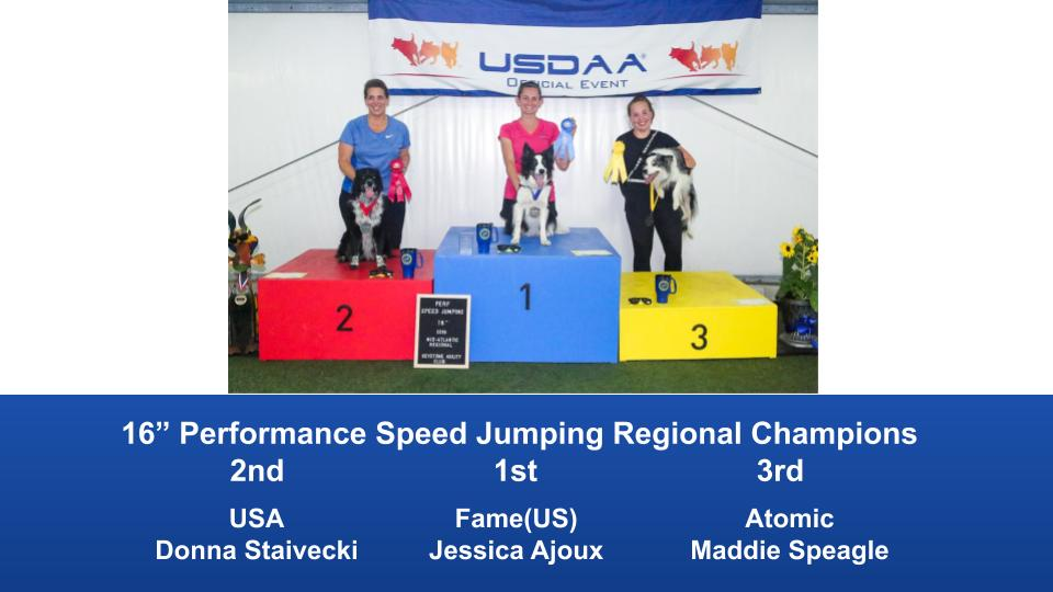 Mid-Atlantic-Regional-2019-June-13-16-Barto-PA-Steeplechase-Performance-Speed-Jumping-Tournament-Champions-8