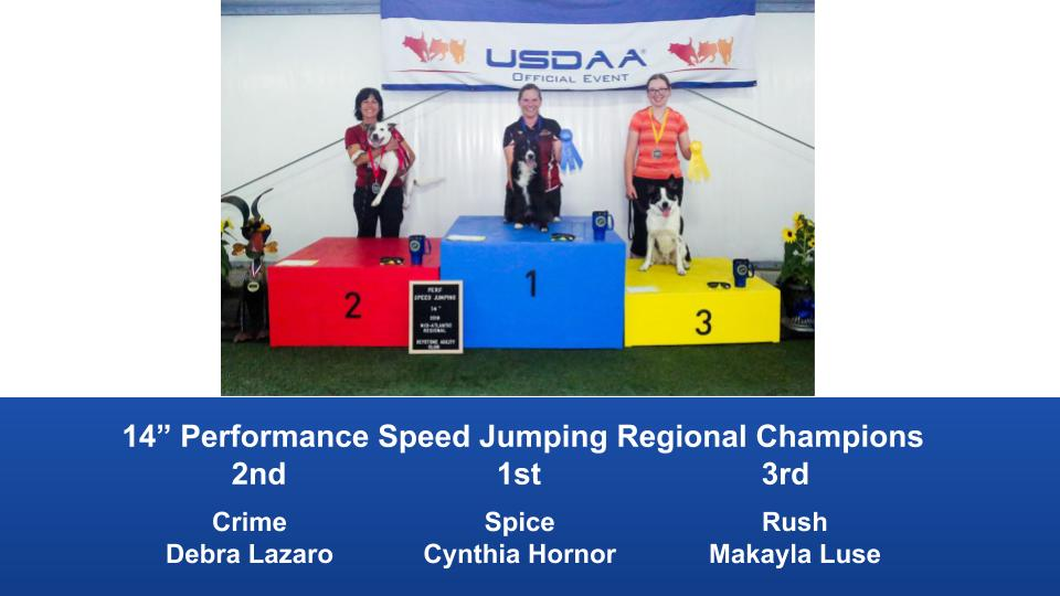 Mid-Atlantic-Regional-2019-June-13-16-Barto-PA-Steeplechase-Performance-Speed-Jumping-Tournament-Champions-9