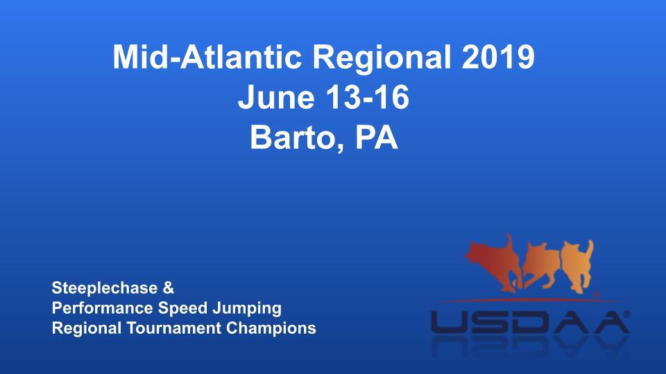 Mid-Atlantic-Regional-2019-June-13-16-Barto-PA-Steeplechase-Performance-Speed-Jumping-Tournament-Champions