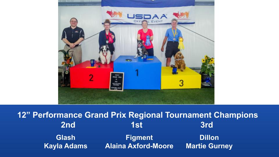 Mid-Atlantic-Regional-2019-June-13-16-Barto.-PA-Grand-Prix-Performance-Grand-Prix-Regional-Tournament-Champions-10