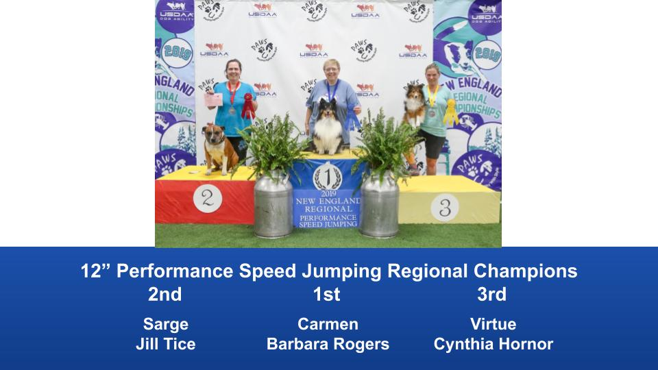 New-England-Regional-2019-August-16-18-Steeplechase-Performance-Speed-Jumping-Tournament-Champions-10