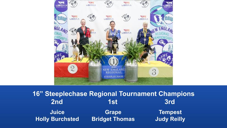 New-England-Regional-2019-August-16-18-Steeplechase-Performance-Speed-Jumping-Tournament-Champions-4