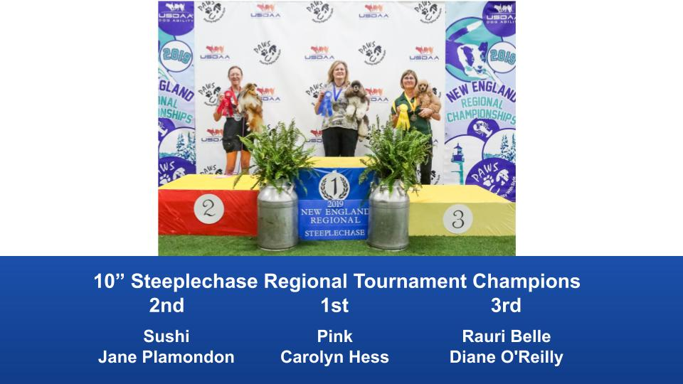 New-England-Regional-2019-August-16-18-Steeplechase-Performance-Speed-Jumping-Tournament-Champions-6