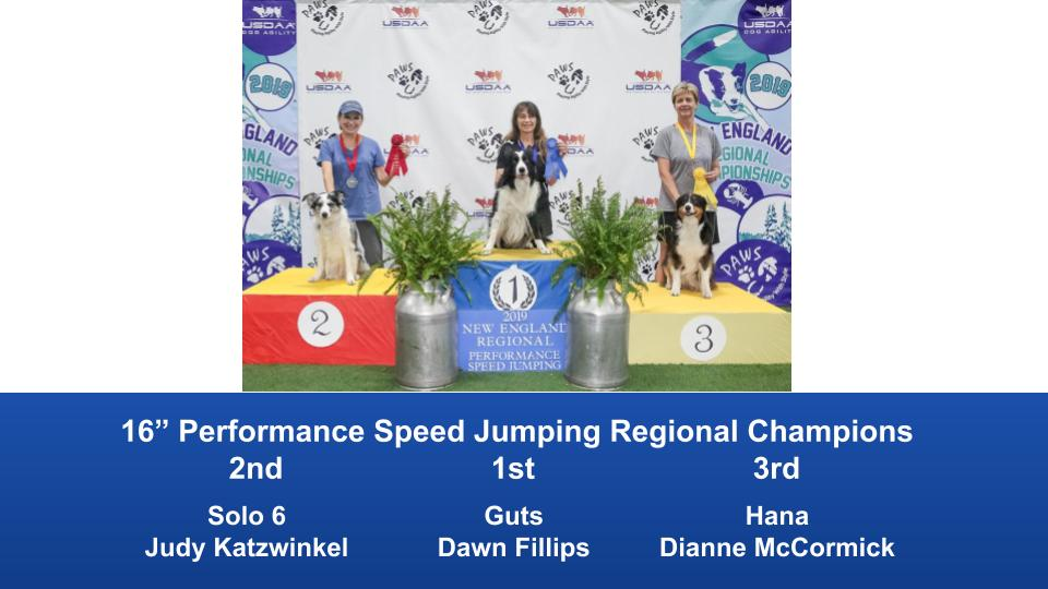 New-England-Regional-2019-August-16-18-Steeplechase-Performance-Speed-Jumping-Tournament-Champions-8