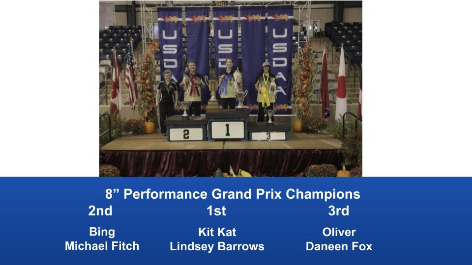 2019-Cynosport-Performance-Grand-Prix-Champions-2