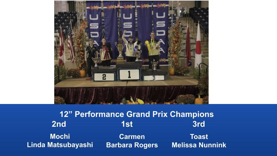 2019-Cynosport-Performance-Grand-Prix-Champions-3