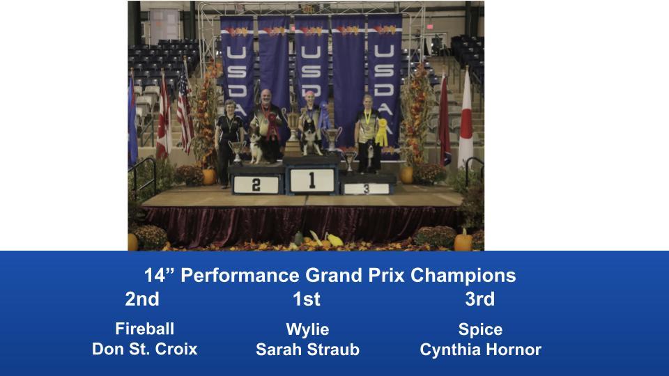 2019-Cynosport-Performance-Grand-Prix-Champions-4