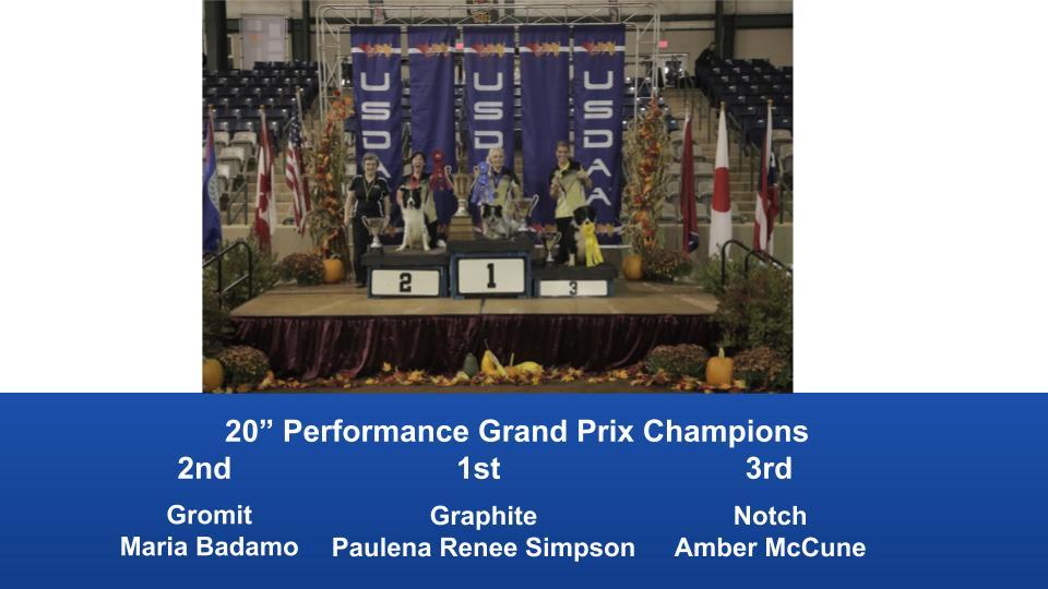 2019-Cynosport-Performance-Grand-Prix-Champions-6