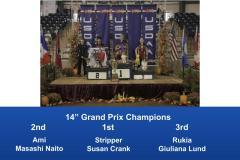 2019-Cynosport-Grand-Prix-Champions-3