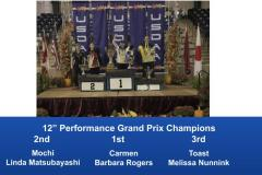 2019-Cynosport-Performance-Grand-Prix-Champions-3