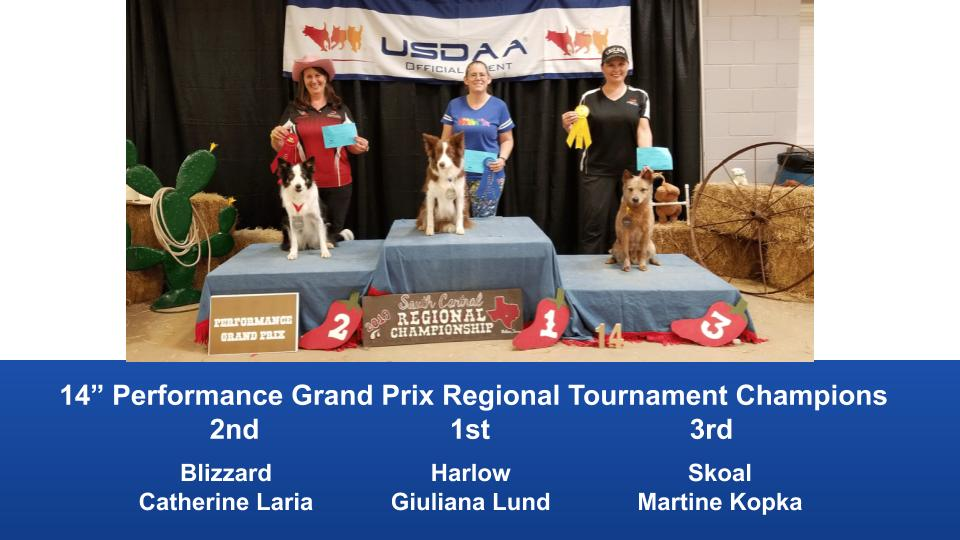 South-Central-Regional-2019-May-10-12-Belton-TX-Grand-Prix-Performance-Grand-Prix-Regional-Tournament-Champions-9