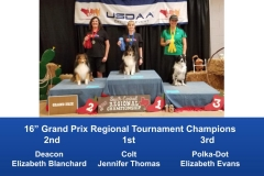 South-Central-Regional-2019-May-10-12-Belton-TX-Grand-Prix-Performance-Grand-Prix-Regional-Tournament-Champions-4