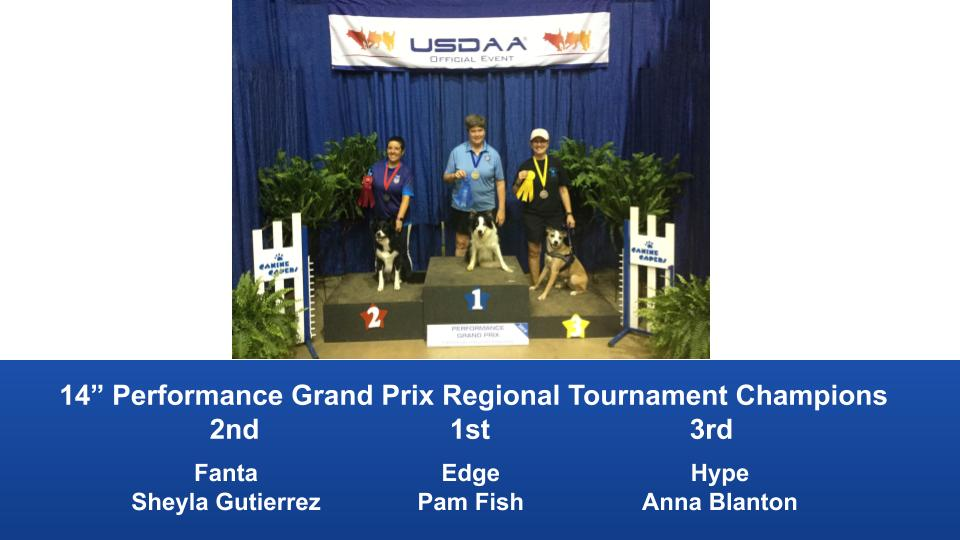 Southeast-Regional-2019-June-6-9-Perry-GA-Grand-Prix-Performance-Grand-Prix-Regional-Tournament-Champions-9