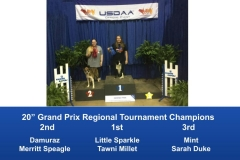 Southeast-Regional-2019-June-6-9-Perry-GA-Grand-Prix-Performance-Grand-Prix-Regional-Tournament-Champions-3