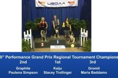 Southeast-Regional-2019-June-6-9-Perry-GA-Grand-Prix-Performance-Grand-Prix-Regional-Tournament-Champions-7