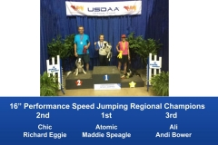 Southeast-Regional-2019-June-6-9-Perry-GA-Steeplechase-Performance-Speed-Jumping-Tournament-Champions-8