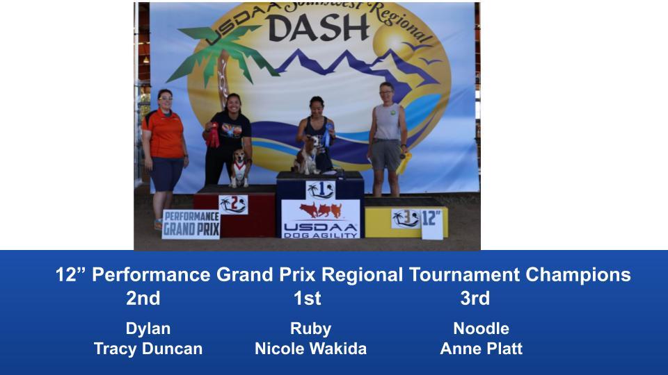 Southwest-Regional-2019-June-28-30-Norco-CA-Grand-Prix-Performance-Grand-Prix-Regional-Tournament-Champions-10