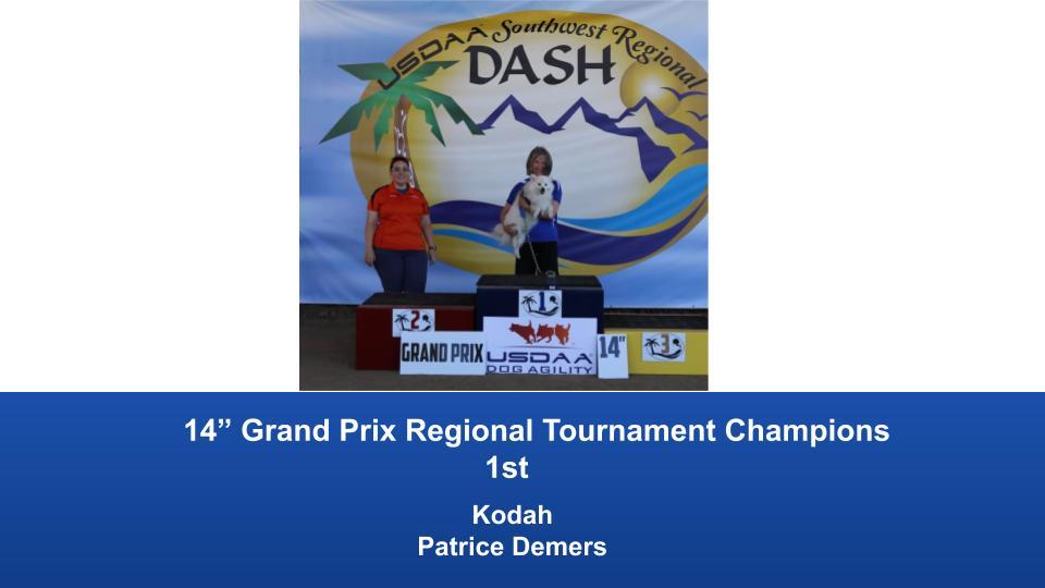 Southwest-Regional-2019-June-28-30-Norco-CA-Grand-Prix-Performance-Grand-Prix-Regional-Tournament-Champions-5