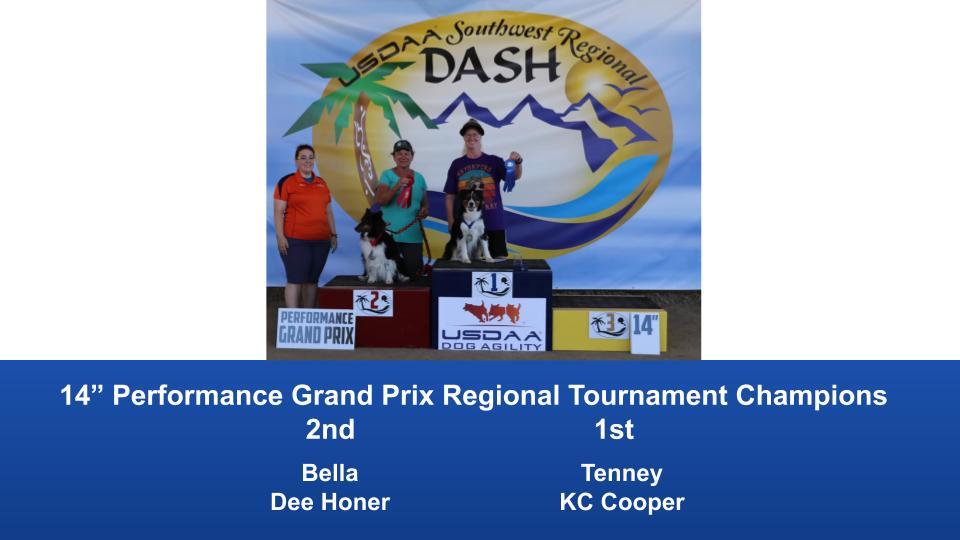 Southwest-Regional-2019-June-28-30-Norco-CA-Grand-Prix-Performance-Grand-Prix-Regional-Tournament-Champions-9