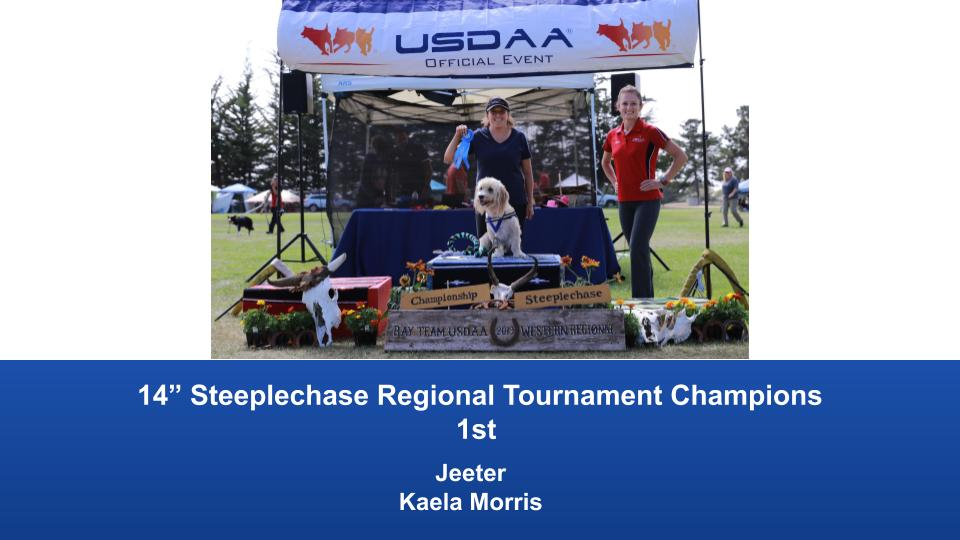 Western-Regional-2019-Aug-31-Sept-2-Steeplechase-Performance-Speed-Jumping-Tournament-Champions-5