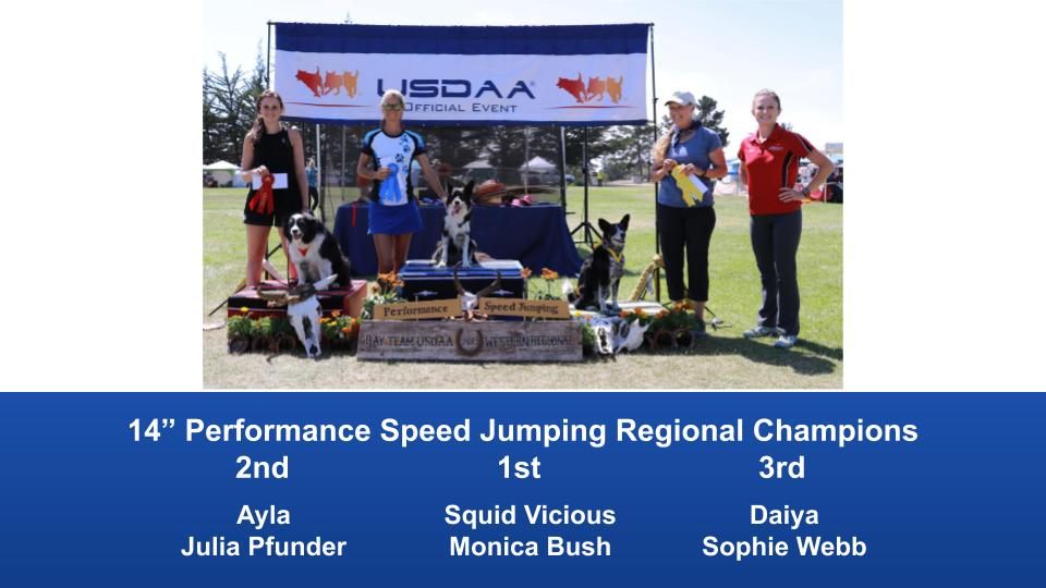 Western-Regional-2019-Aug-31-Sept-2-Steeplechase-Performance-Speed-Jumping-Tournament-Champions-9