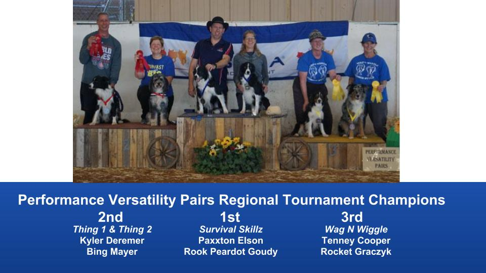 The Wild West Regional 2019 March 8-10 Queen Creek, Arizona DAM Team and PVP Champions (2)
