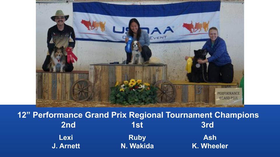 The Wild West Regional 2019 March 8-10 Queen Creek, Arizona Grand Prix & Performance Grand Prix Regional Tournament Champions (10)