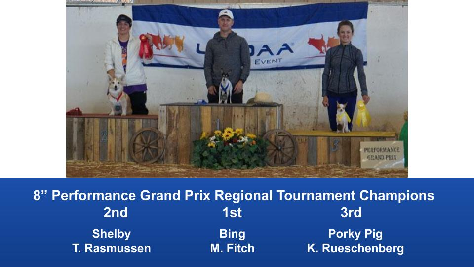 The Wild West Regional 2019 March 8-10 Queen Creek, Arizona Grand Prix & Performance Grand Prix Regional Tournament Champions (11)