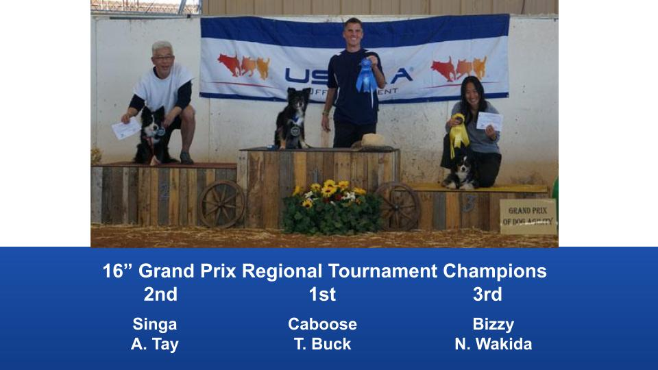 The Wild West Regional 2019 March 8-10 Queen Creek, Arizona Grand Prix & Performance Grand Prix Regional Tournament Champions (4)