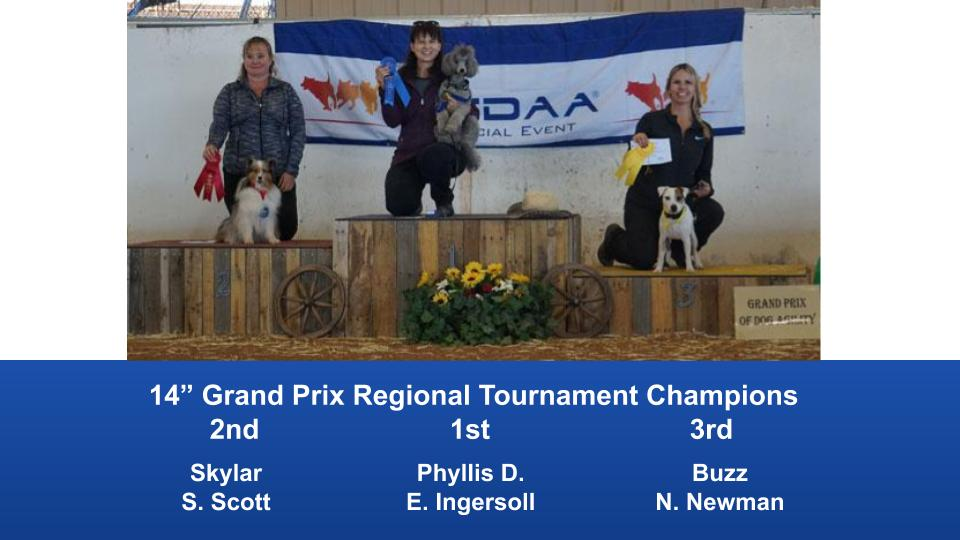 The Wild West Regional 2019 March 8-10 Queen Creek, Arizona Grand Prix & Performance Grand Prix Regional Tournament Champions (5)