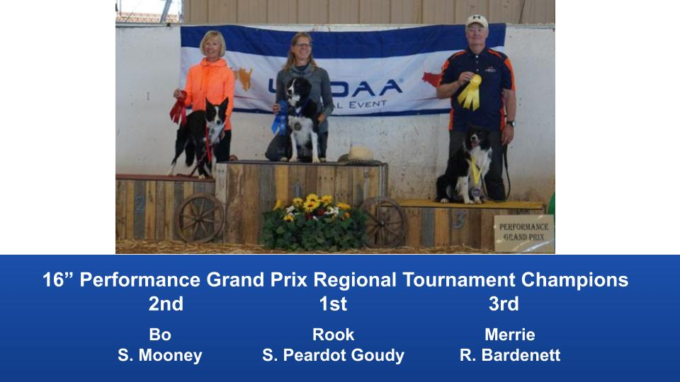 The Wild West Regional 2019 March 8-10 Queen Creek, Arizona Grand Prix & Performance Grand Prix Regional Tournament Champions (8)