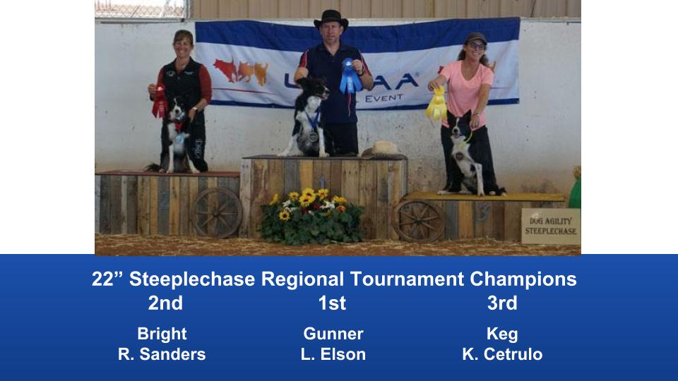 The Wild West Regional 2019 March 8-10 Queen Creek, Arizona Steeplechase & Performance Speed Jumping Tournament Champions (3)