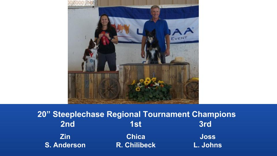The Wild West Regional 2019 March 8-10 Queen Creek, Arizona Steeplechase & Performance Speed Jumping Tournament Champions (4)