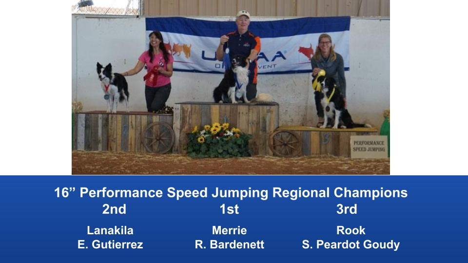 The Wild West Regional 2019 March 8-10 Queen Creek, Arizona Steeplechase & Performance Speed Jumping Tournament Champions (9)