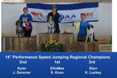 The Wild West Regional 2019 March 8-10 Queen Creek, Arizona Steeplechase & Performance Speed Jumping Tournament Champions (10)