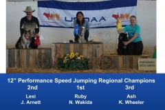 The Wild West Regional 2019 March 8-10 Queen Creek, Arizona Steeplechase & Performance Speed Jumping Tournament Champions (11)