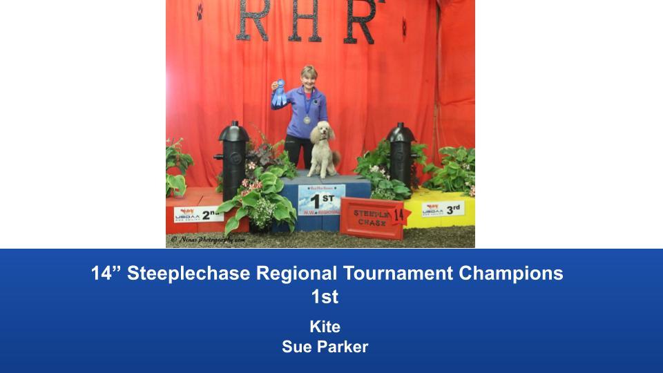 Pacific-Northwest-Regional-2019-May-24-26-Auburn-WA-Steeplechase-Performance-Speed-Jumping-Tournament-Champions-5