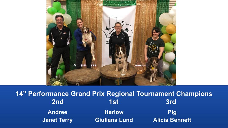 South-Central-Regional-2020-Grand-Prix-and-PGP-Regional-Tournament-Champions-9