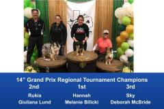 South-Central-Regional-2020-Grand-Prix-and-PGP-Regional-Tournament-Champions-5
