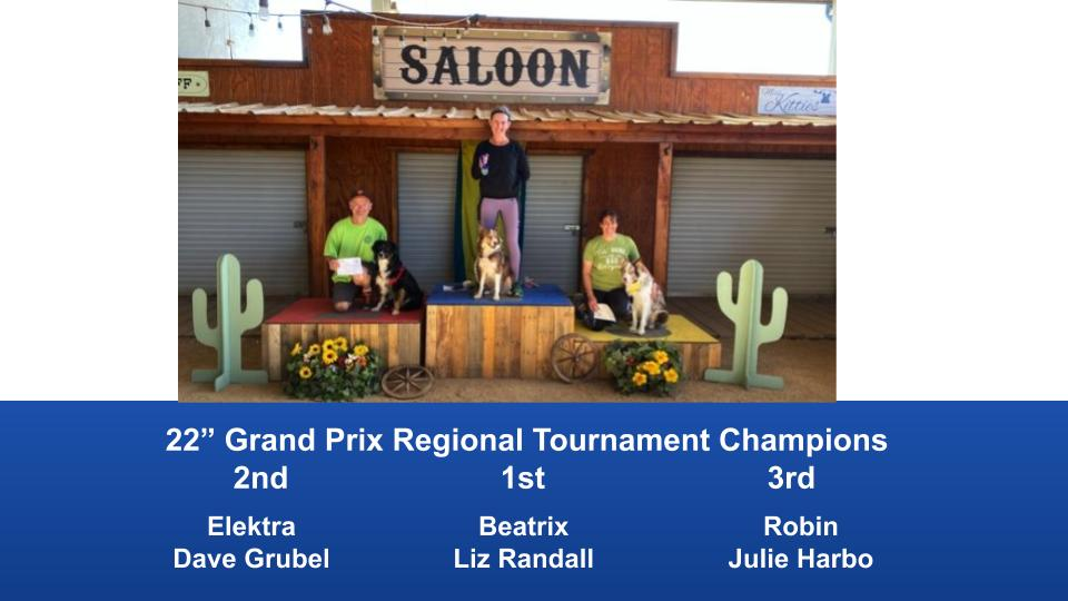 The-Wild-West-Regional-2020-Grand-Prix-Performance-Grand-Prix-Regional-Tournament-Champions-2