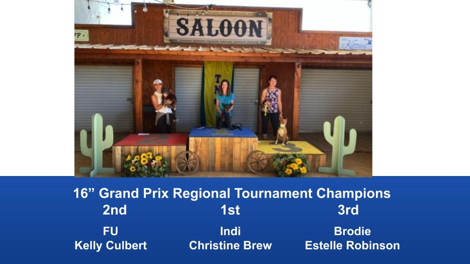 The-Wild-West-Regional-2020-Grand-Prix-Performance-Grand-Prix-Regional-Tournament-Champions-4