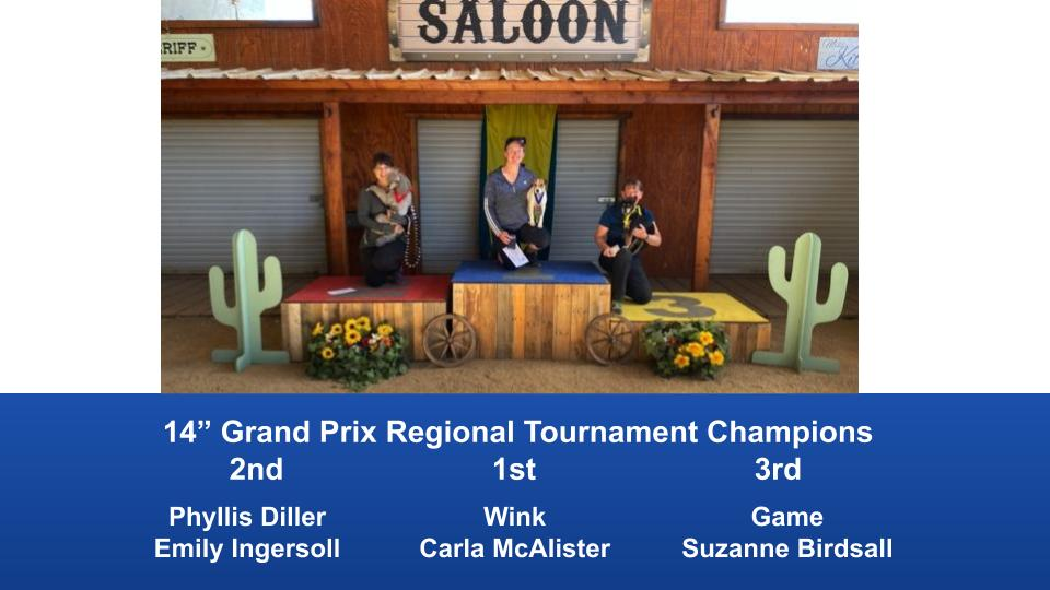 The-Wild-West-Regional-2020-Grand-Prix-Performance-Grand-Prix-Regional-Tournament-Champions-5
