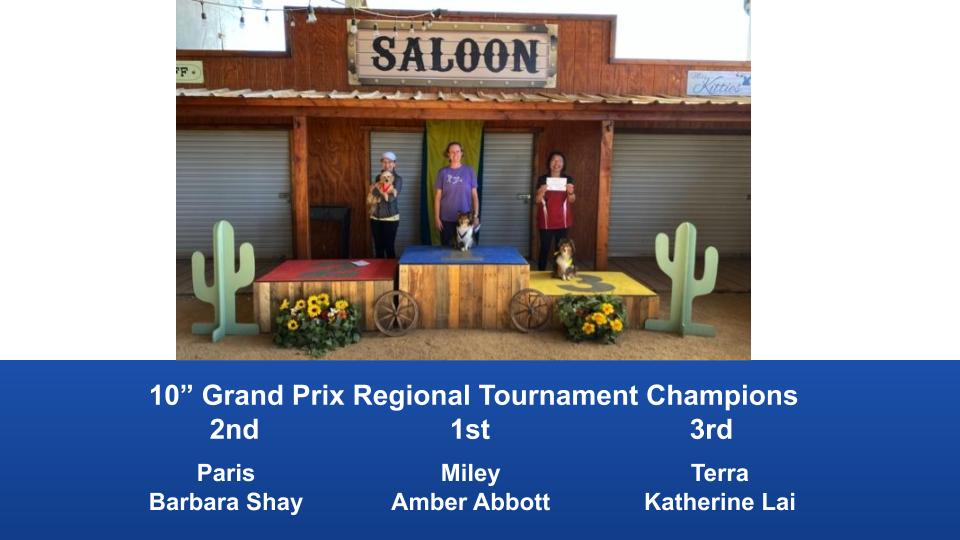 The-Wild-West-Regional-2020-Grand-Prix-Performance-Grand-Prix-Regional-Tournament-Champions-6