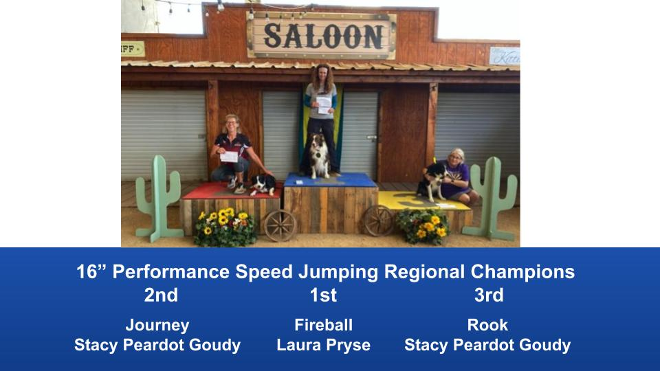 The-Wild-West-Regional-2020-Steeplechase-Performance-Speed-Jumping-Tournament-Champions-8