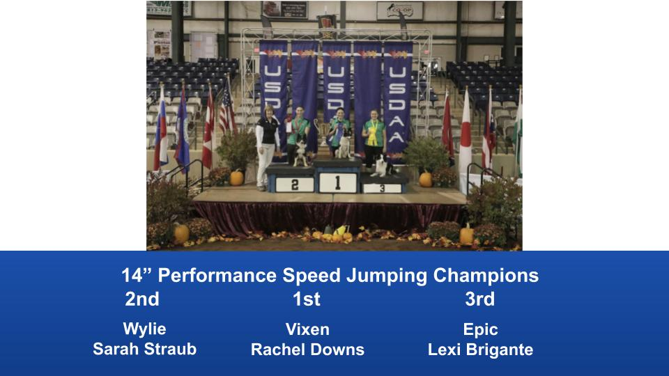 2019-Cynosport-Performance-Speed-Jumping-Champions-4