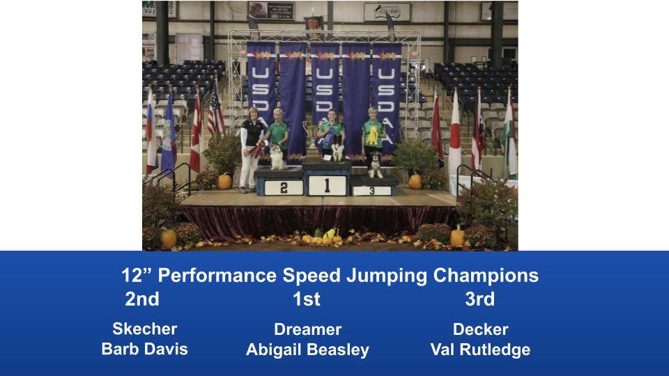 2019-Cynosport-Performance-Speed-Jumping-Champions-8