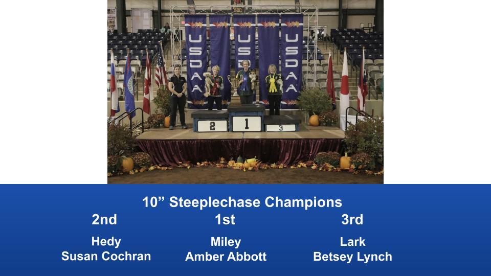 2019-Cynosport-Steeplechase-Champions-2