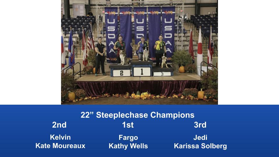 2019-Cynosport-Steeplechase-Champions-6